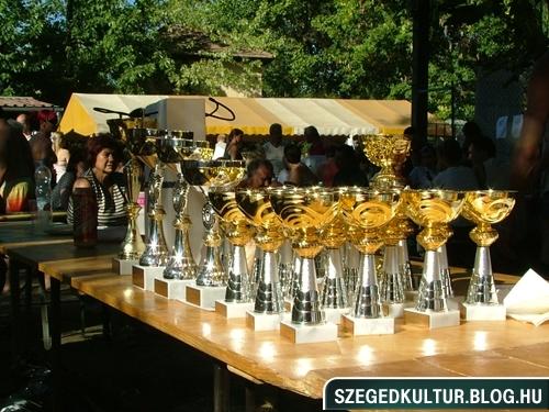 Augusztus20-halfozo-verseny2012-sarga019