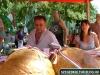 Augusztus20-halfozo-verseny2012-sarga011