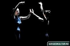 Ladybird Stúdió táncbemutató