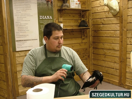 oalyavalasztasivasar2012osz003